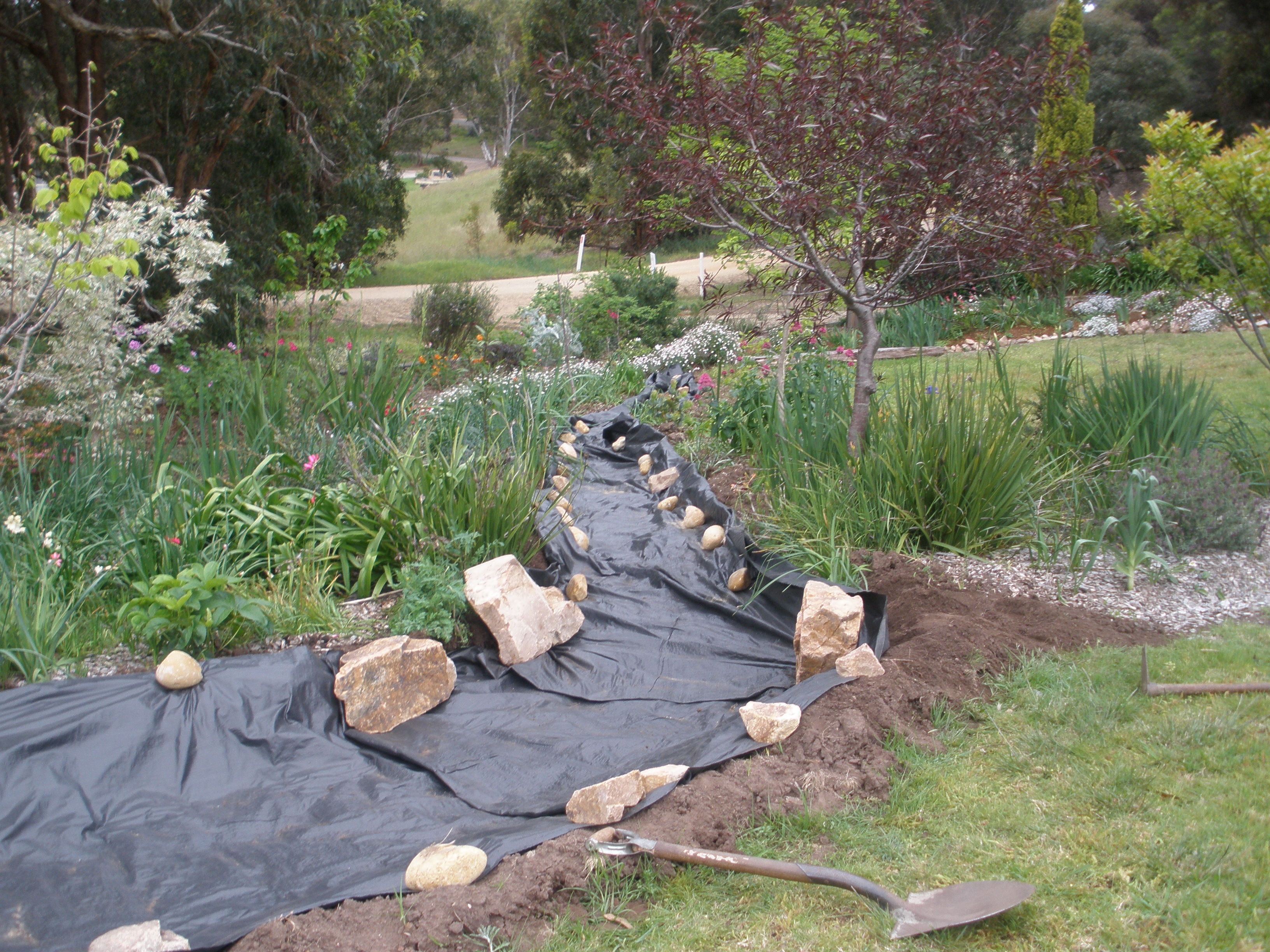 Dry River Bed Update Gippsland Granny
