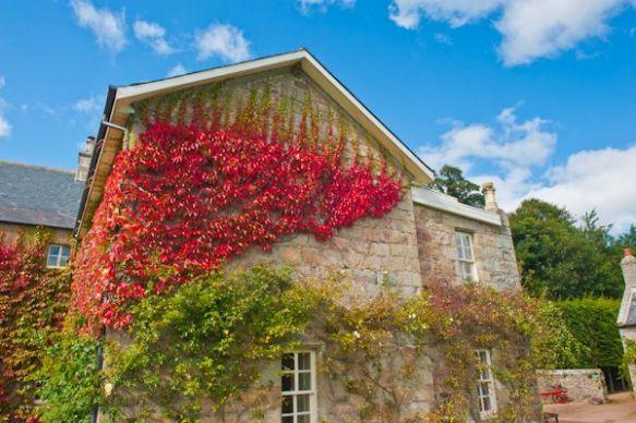 Pitmedden House