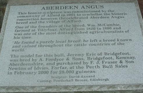 Aberdeen angus info