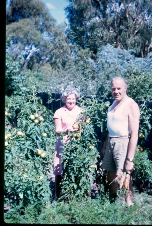 mum dad tomatoes 69