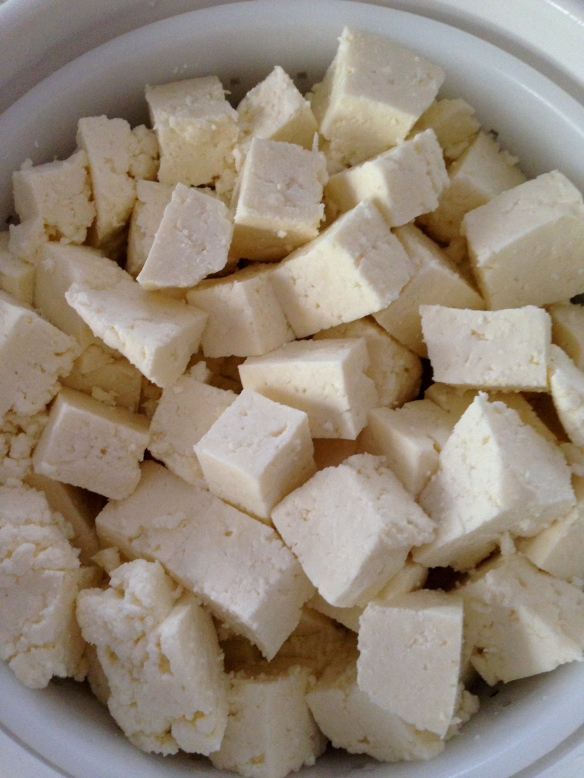 cheese making 5