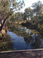 The river near the winery
